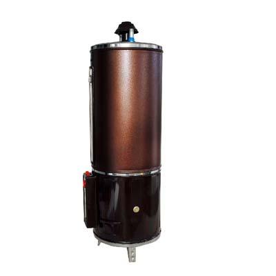 Rays 35 Gallons Storage Gas Geyser 35G H-G